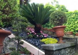 terrazze giardini pensili e verticali